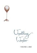 Unsettling Wonder Volume 1