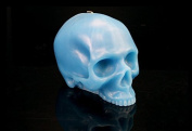 Skull Candle by D.L. & Company