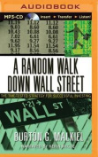 A Random Walk Down Wall Street [Audio]