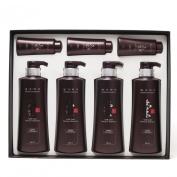 Daeng Gi Meo Ri Ki Gold Premium Shampoo set(shampoo 500ml * 4 + 70ml * 3) Total 7pcs