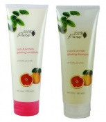 100% Pure Shampoo & Conditioner Yuzu and Pomelo Glossing, 240ml each