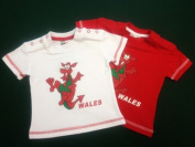 Wales Welsh Dancing Dragon Baby T-shirt [wht 0-6mth]