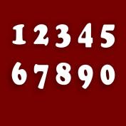 Mirrored Door Number SIGN/ PLAQUE '0m 10cm each