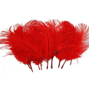 Sealike 10 Pcs 15-20cm Real Natural Home Decor Ostrich Feather Great Party Wedding Party Decorations with a Stylus Red