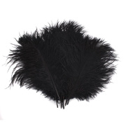Sealike 10 Pcs 15-20cm Real Natural Home Decor Ostrich Feather Great Party Wedding Party Decorations with a Stylus Black