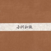 Ogawa(hosokawa) Washi Single Colour Paper 25cm(9.84 In), No.22 Ocher, 50sheets