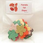 Bag of 24 Plantable Autumn Flowers