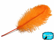 Ostrich Feathers Orange Ostrich Tail Feathers 10 Pieces