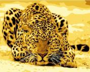 DIY PBN-paint by number Leopard 41cm X 50cm Frameless.