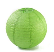Domire 12 Pcs 25cm Green Chinese Paper Lanterns/lamps for Parties, Weddings