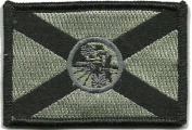 Florida Tactical Flag Patch