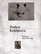 Sladjan Nedeljkovic - Seeing is (Not) Believing