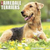 Airedale Terriers Calendar