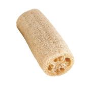 WHOA LOOFAH! Ultra Exfoliating 15cm Loofah Bath Sponge