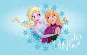 Disney Frozen Rug for Kids bedroom 50x80 cm