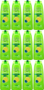 TWELVE PACKS of Garnier Fructis 2in1 Normal Shampoo 250ml