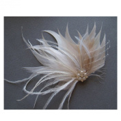 Jelinda Women's Champagne Peacock Feather Pearl Bridal Fascinator Hair Clip Hair Accessory