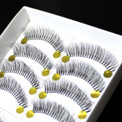 10 Pairs False Eyelashes