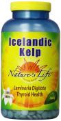 Nature's Life Icelandic Kelp 1000 tabs