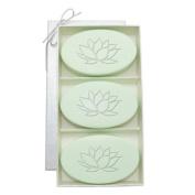 Carved Solutions Signature Spa Trio Green Tea & Bergamont-Lotus Soap