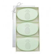 Carved Solutions Signature Spa Trio Green Tea & Bergamont-Pineapple Soap