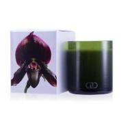 Dayna Decker Botanika Multisensory Candle With Ecowood Wick Sierra 170G180ml