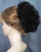 HAYLEY Clip On Hairpiece Mona Lisa 1-Jet Black