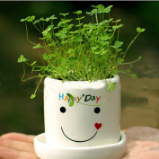 Glovion Creative Happy Angel Smile Day Happy Day Desktop Planter Planting Bonsai Potted Plant for Indoor Decoration