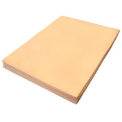 Skin Fun Foam Sheet 23cm X 30cm X 0.2cm Thick