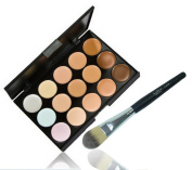 LyDia 15 Colours Cream Concealer/Highlight/Face Contour Camouflage Palette Dull/Redness Skin/Black Circle kit set + LyDia Black/Silver Foundation/Concealer Brush F-010L