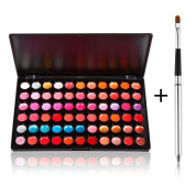 Fashion Base New High Quality 66 Colours Lip Gloss Palette Makeup Kit Set With FREE BRUSH