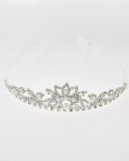 Clear Rhinestone Tiara with Combs