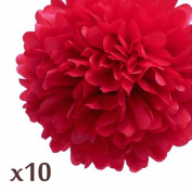 WOM-HOPE® 10 Pack 25cm Tissue Paper Pom Pom Flower Ball Pom-poms - Wedding Party Supplies Decorations Birthday Parties and Baby Showers Party Decorations (Red