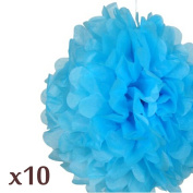 WOM-HOPE® 10 Pack 25cm Tissue Paper Pom Pom Flower Ball Pom-poms - Wedding Party Supplies Decorations Birthday Parties and Baby Showers Party Decorations (Light Blue