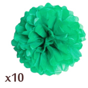 WOM-HOPE® 10 Pack 25cm Tissue Paper Pom Pom Flower Ball Pom-poms - Wedding Party Supplies Decorations Birthday Parties and Baby Showers Party Decorations (Green