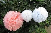 Saitec ® 12pcs Mixed 3 Sizes White Pink Tissue Paper Pom Poms Flower Wedding Party Baby Girl Room Nursery Decoration