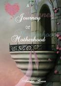 A Journey of Motherhood