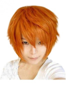 Short Cosplay Wig Men Full Wig Synthetic Fibre Wig Straight
