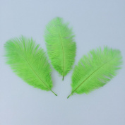 Natural 13cm - 20cm 50pcs Lime Green Ostrich Feather for Wedding Centrepiece Home Decoration