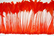 1 Dozen Striped BURNT COQUE Feather Fringe - ORANGE