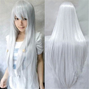 Lady Girl's Wig Anime Cosplay Straight Wig Hairpiece Extensions Role Play Prop Silver