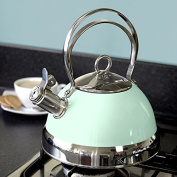 Candy Rose Collection Mint Stove Kettle