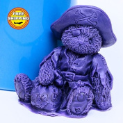Teddy Pirate 3d Mould Soap Mould Silicone Moulds Mould for Soap Mould Teddy Mould Silicone Mould Animals Mould
