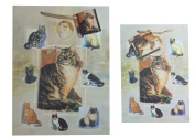 Gift Wrap Bag with Cats Design Set of Two