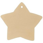 Star Gift Tag 7.6cm - 1.9cm -Bag of 1