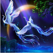 5d Diy Diamond Painting Animals Birds Lover Phoenix Cross Stitch Round Rhinestone Pictures Of Crystals Embroidery Patchwork