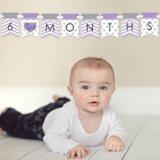 Chevron Purple - 12 Month By Month Photo Banner for Baby's First Year - Monthly Photo Prop