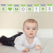 Chevron Green - 12 Month By Month Photo Banner for Baby's First Year - Monthly Photo Prop