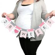 Chevron Pink - Week by Week Pregnancy Banner - Maternity Weekly Photo Prop