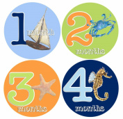 Mumsy Goose Boy First Year Stickers 1-12 Months
